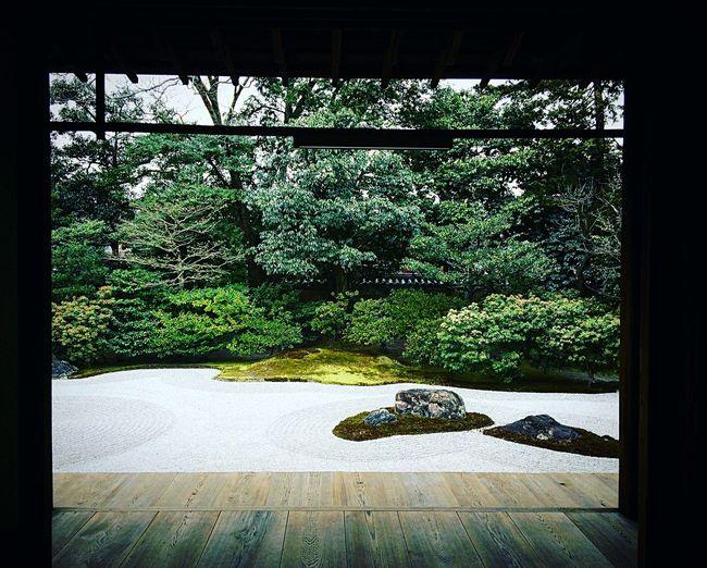 建仁寺 方丈庭園 東山 京都 Kyoto Kyotojapan