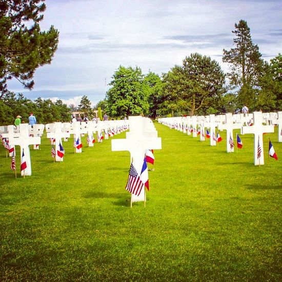 Remembering the few! British Legion Remembrance Freedom Gratitude