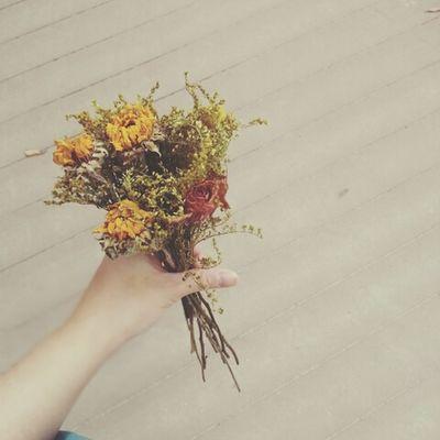 Dry Flower  드라이플라워 일요일오후2시