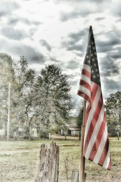 Outside Colorful Bright Sky Trees Outdoors Blue Clouds Fence American Flag Old Glory Red White And Blue Stars And Stripes Flag United States