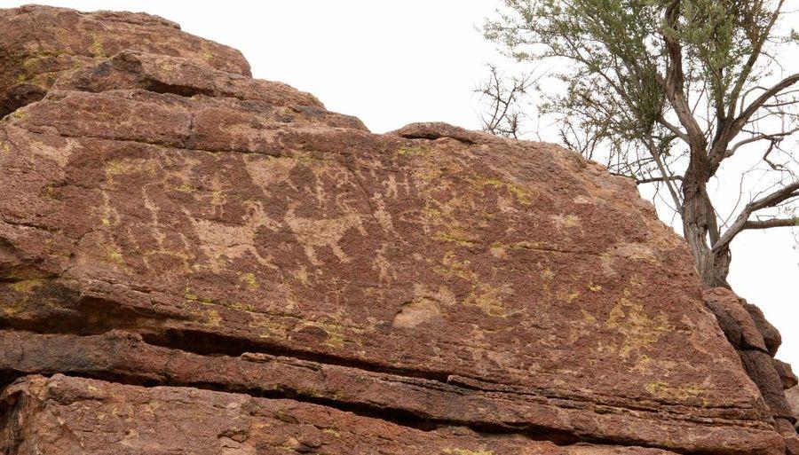 Ancient Civilization Ancientart Art Geology Rocks Geologyporn Native American Indian Nativeamericanaret Petroglyph Petroglyphs Rockart Hidden Gems