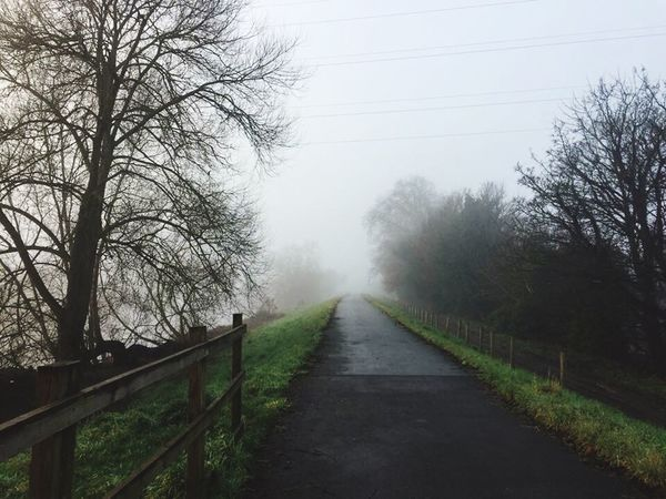 Foggy Mornings Road Nature Tranquility Fog Outdoors Rural Scene Scenics Autumn Beauty In Nature Chester ferry lane