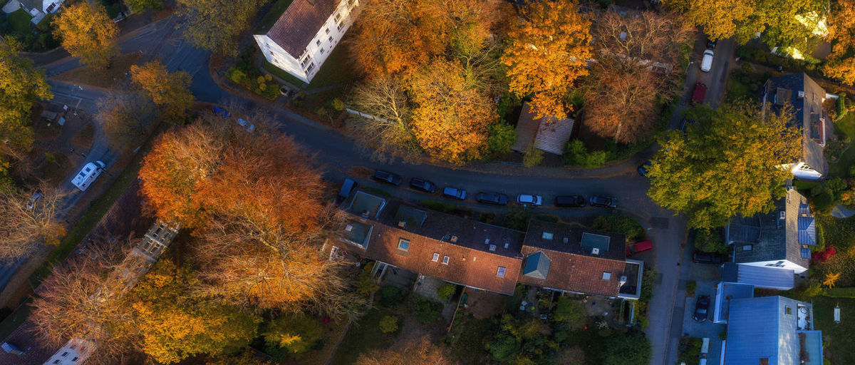 High angle view of trees by building during autumn