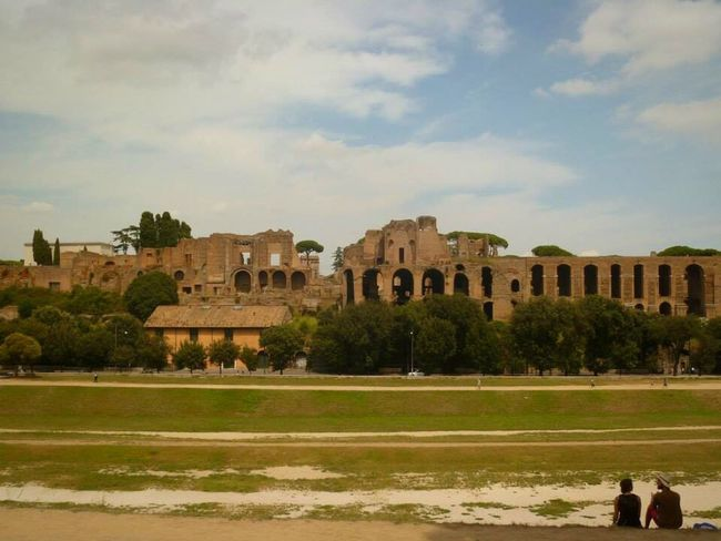 History Architecture Built Structure The Past Sky Day Old Ruin Ancient Tree Cloud - Sky Travel Destinations Building Exterior Outdoors Grass Nature Ancient Civilization Palatine Hill Rome, Italy 🇮🇹 Italy Beautiful Location 💕