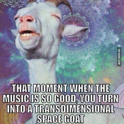 This happens! Goodtunes Music Spacegoat