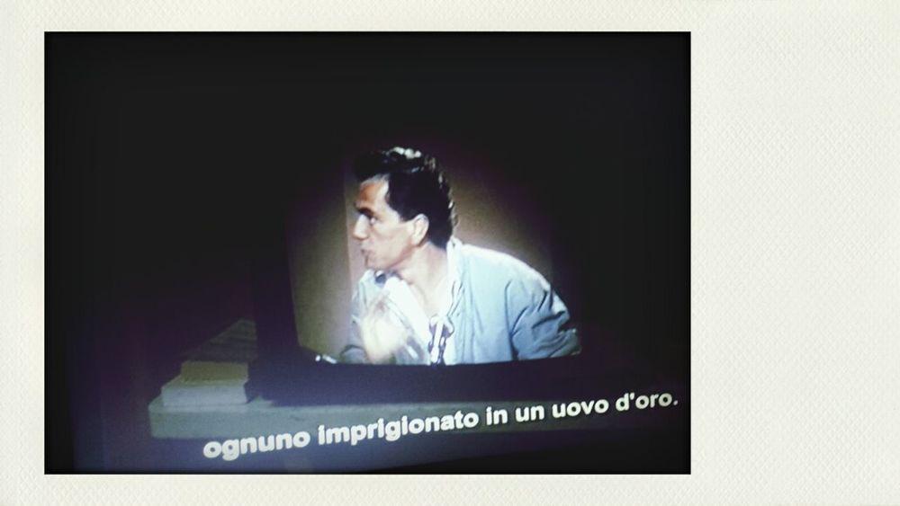 The Vanishing ( 1988 )