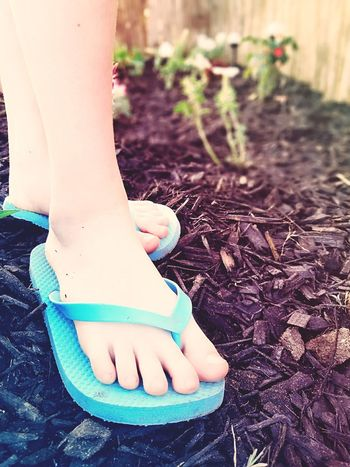 The Photojournalist - 2017 EyeEm Awards Spring Has Arrived Wandering In The Flowers Lifestyles Flowers And Flipflops Exploring Garden Pretty Feet Toes In The Flower Bed Flowerbeds