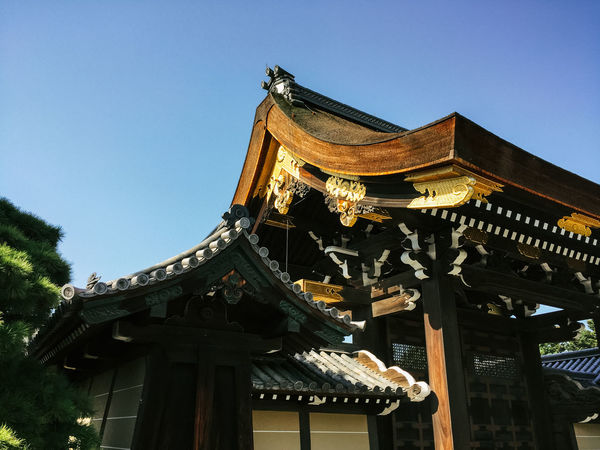 Castle Entrance Gate Japan Architecture Building Exterior Built Structure Clear Sky Day Low Angle View No People Outdoors Palace Roof Shogun Sky Tree