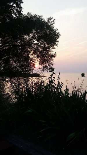 lake sunset Check This Out