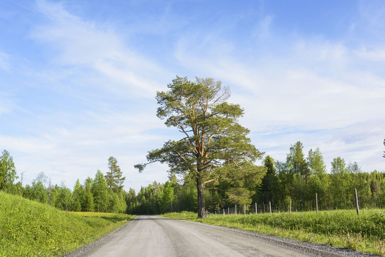 Road passing through rural landscape against blue sky