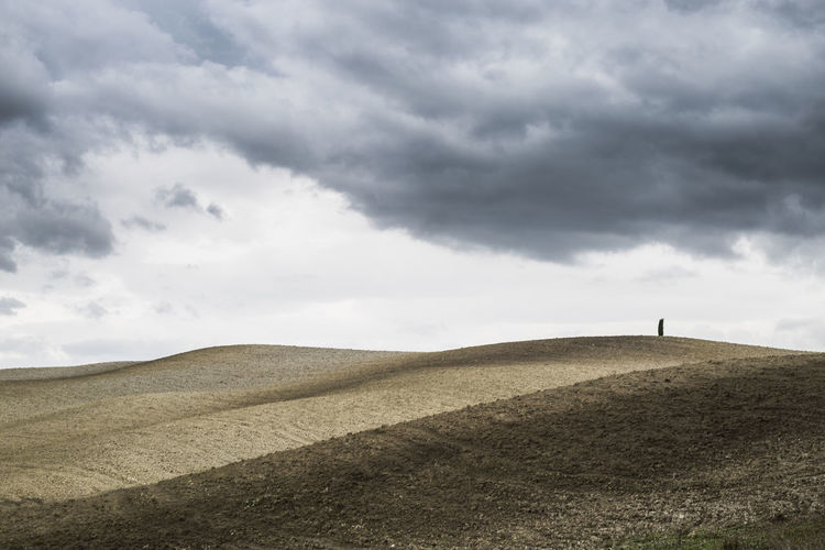 Autumn Countryside Cypress Dark Clouds Dramatic Sky Fields Landscape Tuscany Tuscany Countryside Landscapes With WhiteWall Perspectives On Nature