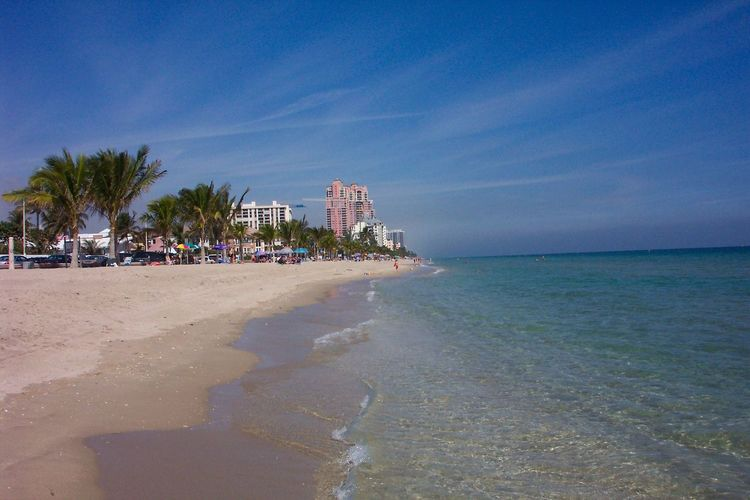 Beach Ocean Water Ft Lauderdale Fort Lauderdale  Florida Sand Sea Palm Tree Architecture Building Exterior Built Structure Sky Horizon Over Water City Travel Destinations Outdoors Nature Tree Day No People