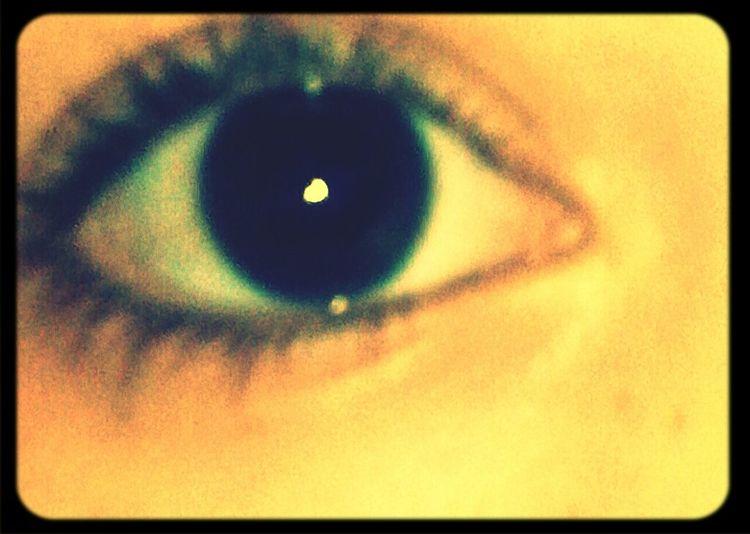 Brown Eyes!