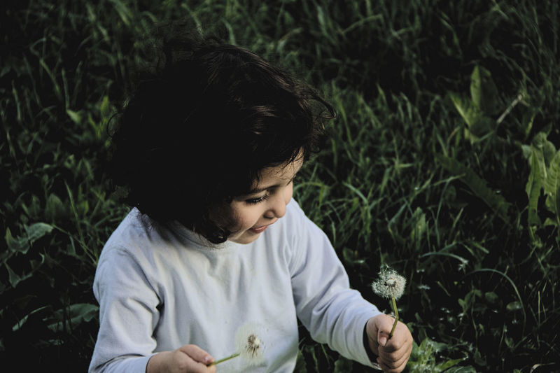 High angle view of happy girl holding dandelions on grassy field
