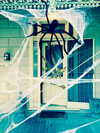 Halloween Halloween Horrors Giant Spiderweb House Frontporch Frontdoor Web Scary Trickortreat
