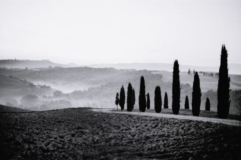 Tuscany Chianti Filmphotography Italy EyeEm Tuscany Travel Destinations Sky Tranquil Scene Tranquility Nature Scenics - Nature Land Beauty In Nature No People Non-urban Scene Landscape