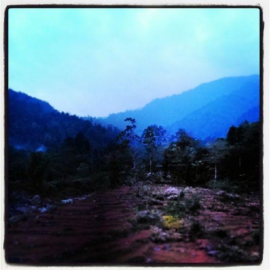 Dooars__trip Pit_stop Bindu_to_jhalong