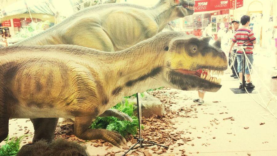 Saojosedoriopreto Love Dino