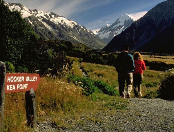 Which walk to take; The Valley or Key Point? In early summer, the Valley route offers great views of the herb fields. The track includes swing bridges that look scary to some people but are fun for others. If you do start the Valley hike, be sure to complete it. If you find it too challenging, Kea Point is an easier walk; with views of the Mueller Glacier. Either way, the walks through grass lands feel so close to the towering, snow-covered mountain peaks. If you like it steeper, try Red Tarns. Or just hang a large, framed picture on your wall and enjoy the view; while seated in your favourite chair. http://pics.travelnotes.org/ Couple Kea Point Rear View Travel Photography Beauty In Nature Day Full Length Grass Hiking Landscape Lifestyles Mountain Mountain Range Nature Outdoors People Real People Rear View Scenics Sky Snow Togetherness Travel Pics Two People Walking