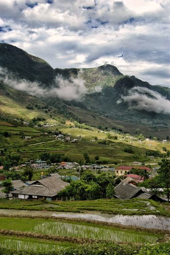 Vietnam SaPa Plant Cloud - Sky Nature Sky Environment Beauty In Nature Tree Scenics - Nature Land Water Day No People Landscape Field Grass Tranquility Green Color Growth Architecture Outdoors