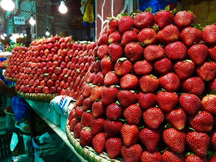 Strawberries forever Plant Kingdom Plants Strawberries Sweet Strawberries Fruits Red Strawberries Red Fruits Strawberry Fruit Fragaria Beautifully Organized