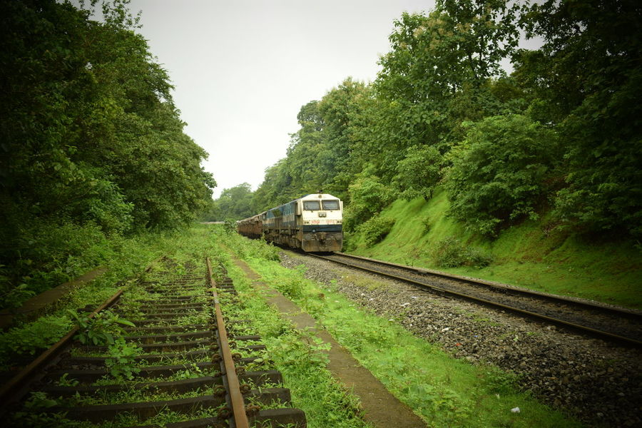 Indian railway in its farthest reach. Konkan railway through the western ghats in monsoons Goa Indian Railways Monsoon Serenity Abandoned Track Day Forests Green Color Journey Konkan Konkanrailway Lush Foliage Mode Of Transport Nature No People Outdoors Public Transportation Rail Transportation Railroad Railroad Track Sky Train - Vehicle Transportation Tree