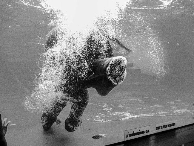 Photo Photo ASIA Thailand Underwater Thailand Shower Elephant Water Nature Sea Bubble Wet Underwater Condensation