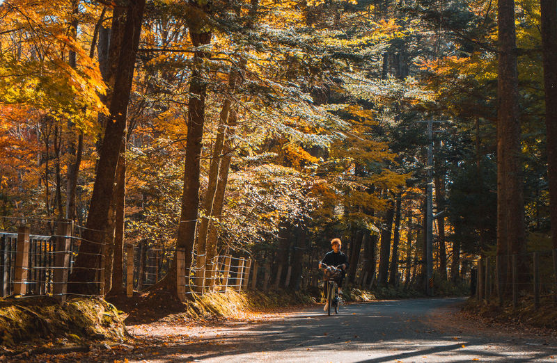 Man riding bicycle on road amidst trees in forest during autumn