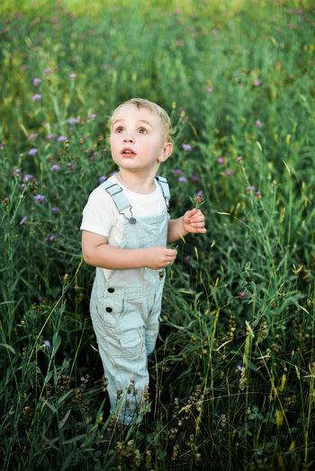 Cute boy on field