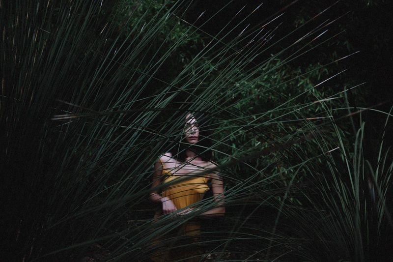 Low angle view of woman on tree at night