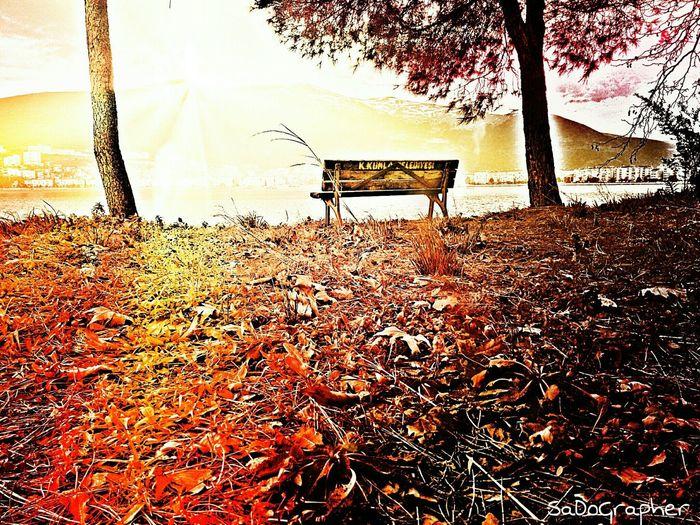 Relaxing First Eyeem Photo Natural Nature_collection Nature Horizon Sea Autumn Colors Follow