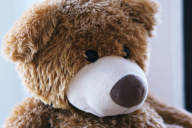 Close-up of stuffed toy brown teddy bear