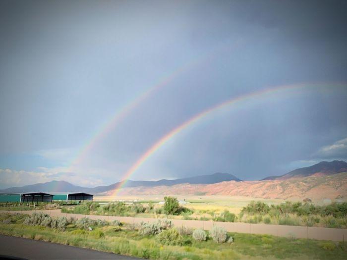 Utah Rainbows