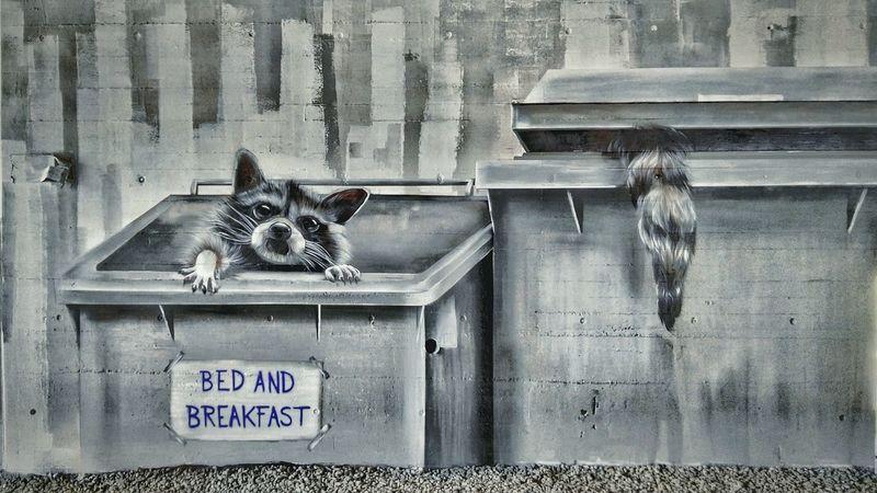 Animal Themes Mural Art Mural Raccoon No People Outdoors Feline Pets Waschbär Waschbären Graffiti Graffiti Art on Freewall in Bregenz, by ALBINO_ONE 2Hände