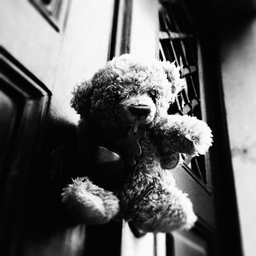 Story behind this picture here: http://bit.ly/13TN0dJ Black & White Teddy Bears Taking Photos