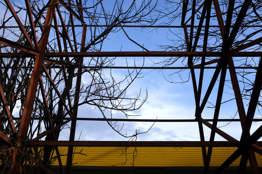 Bare Tree Iron Structure Line And Shape Low Angle View No People Outdoors Silhouette Sky