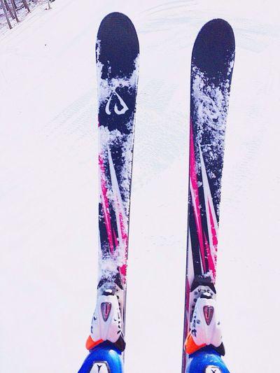 ma Juliette 하이원리조트 Idone Ski