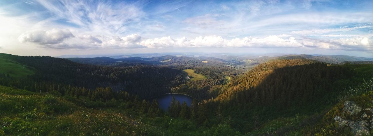 End of the hike, of the day, celebrate with a pic nic? Black Forest Germany Travel Destinations Hiking Feldsee Schwarzwald Black Forest Meadow Pinaceae Dawn Valley First Eyeem Photo