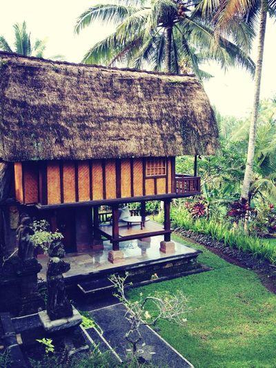 The Rice Barn