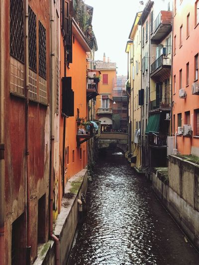 Hidden canal of Bologna Historical Bologna Italy Medieval Old Buildings EyeEm Selects Building Exterior Architecture Built Structure Building Residential District City No People House Alley Canal Water