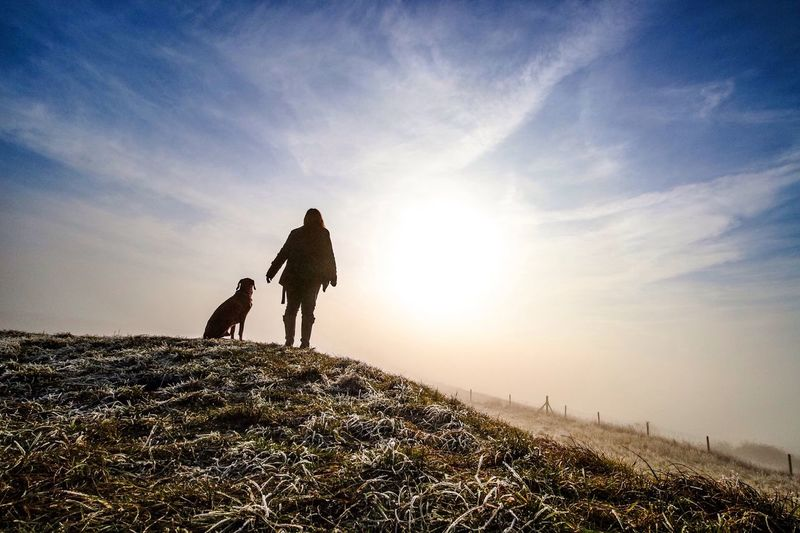 Rear View Of Woman Standing With Dog Against Sky During Sunset