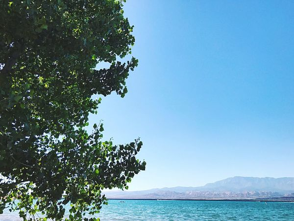 Sand Hollow Lake Blue Sea Nature Scenics Clear Sky Tree Water Day Beauty In Nature Outdoors Tranquil Scene Tranquility No People Sky Beach Mountain Sandhollow Manmadelake Sand Hollow Sand