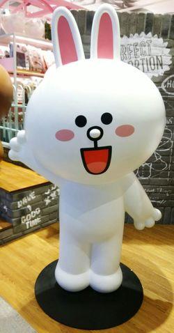 每一個都好可愛 2~ LINE Choco LineChoco Linefriends LineFriendsStore 熊大妹妹