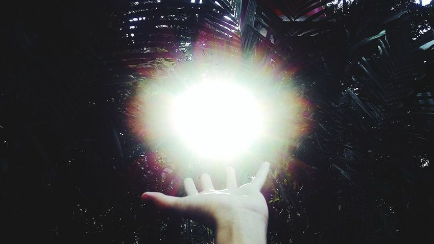 Small Light Sunlight Sun Nature Hand Dawn Lightbender