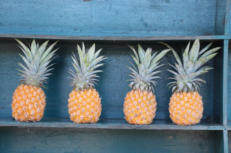 Fruit Pineapple Healthy Eating Freshness Outdoors Food Arrangement Close-up No People Day Sommergefühle