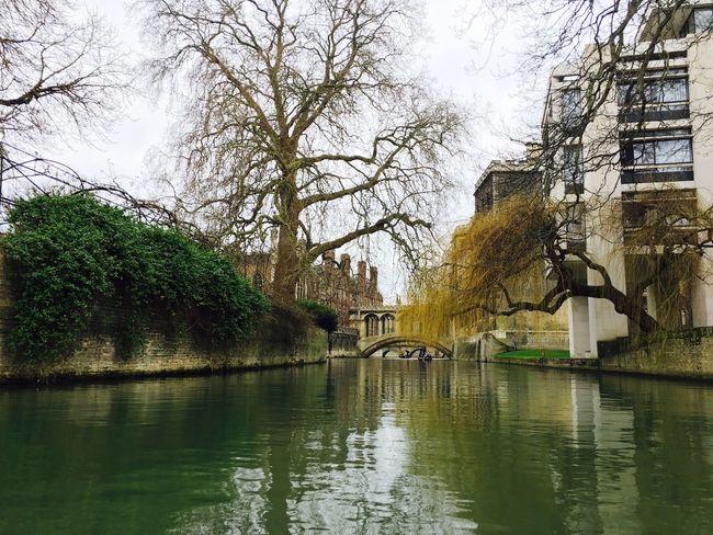 Cambridgeshire Cambridge Cam College Kingscollege Punting River Riverside