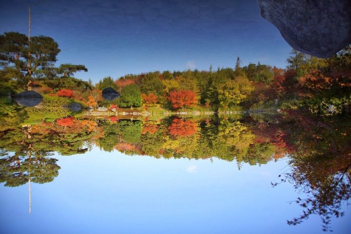 Autumn Colors Water Reflections Landscape EyeEm Nature Lover