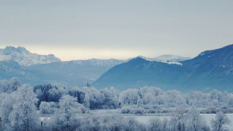 Snow Mountain Blue Landscape Mountain Range Nature Outdoors Tree Beauty In Nature Chiemsee Zauberhaft No People Winter Cold Temperature Frostig Magisch