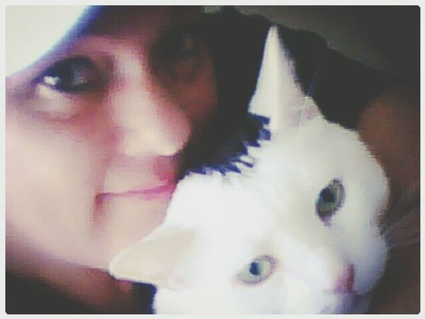 Me And My Bestfriend Ilovemycat Cats Of EyeEm Snugglebuddy Ptsd Support Warm And Fuzzy Depression Killer Pet Therapy