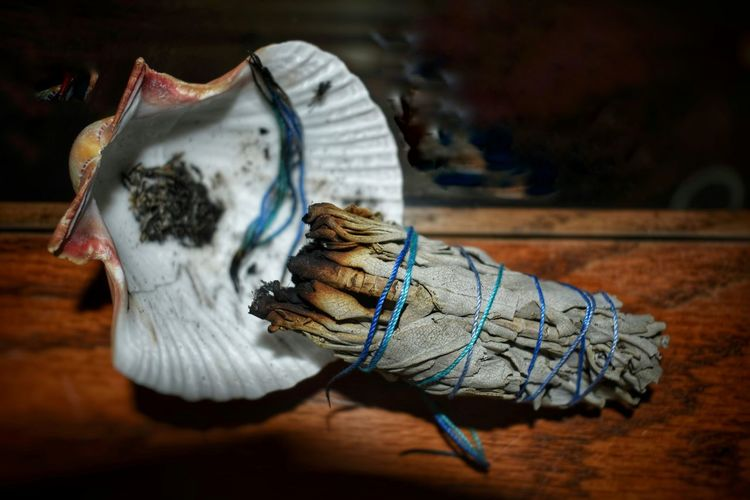 Burnt sage smudge stick and shell